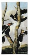 Ivory-billed Woodpeckers Bath Towel