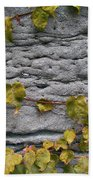 Ivy And Ancient Wall In Old Montreal Hd Photography Bath Towel