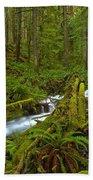 Lifeblood Of The Rainforest Bath Towel