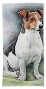 Jack Russell Terrier Bath Towel