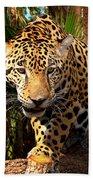 Jaguar Adolescent Bath Towel