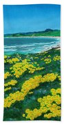 Jalama Beach Hand Towel