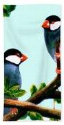 Java Sparrows  #102 Hand Towel