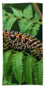 Jeweled Chameleon Furcifer Lateralis Bath Towel