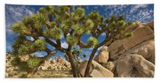 Joshua Tree And Blue Sky Hand Towel