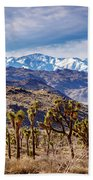 Joshua Tree National Park 2 Bath Towel