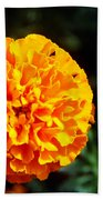 Joyful Orange Floral Lace Bath Towel