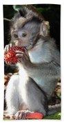 Juicy Fruit 2 Hand Towel