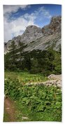 Julian Alps Bath Towel