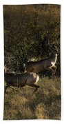 Jumping Deer Bath Towel