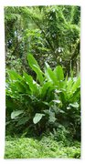 Jungle Fronds Hand Towel