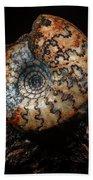 Jurassic Ammonite Bath Towel