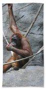 Juvenile Orangutan Hand Towel
