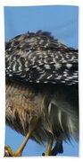 Juvenile Red-shouldered Hawk Bath Towel