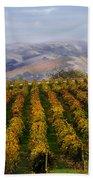 Kalthoff Common Vineyard Hand Towel