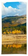 Kenosha Pass Aspens 4 Bath Towel