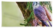 Kestrel On The Cones Bath Towel