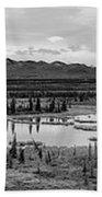 Kettle Pond And The Alaska Range Bath Towel