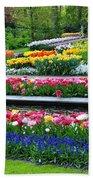 Keukenhof Tulips Ornamental Garden  Hand Towel