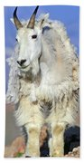 King Of The Mountain Bath Towel
