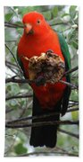 King Parrot Bath Towel