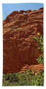Kissing Camels At The Garden Of The Gods Bath Towel