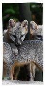 Kit Fox10 Bath Towel