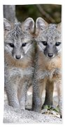 Kit Fox6 Bath Towel
