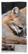 Kit Fox8 Bath Towel