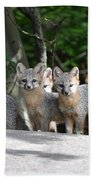 Kit Fox9 Bath Towel