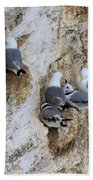 Kittiwakes Tend Their Chicks At Rspb Bempton Cliffs Bath Towel