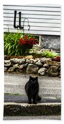 Kitty Across The Street  Bath Towel
