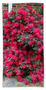 Knockout Red Rosebush Bath Towel