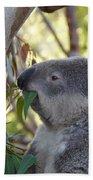 Koala Time Bath Towel