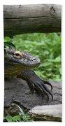 Komodo Dragon Climbing Over A Fallen Tree Bath Towel