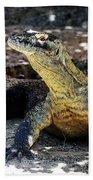 Komodo Dragon Bath Towel