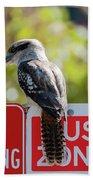 Kookaburra On A Road Sign Bath Towel