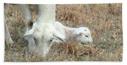 L Is For Lamb Bath Towel