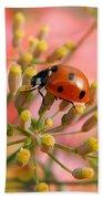 Ladybug On Fennel Bath Towel