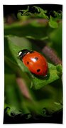 Ladybug With Swirly Framing Bath Towel