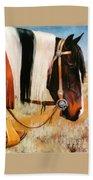 Ladys Jewels Horse Painting Portrait Bath Towel