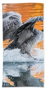 Landing Bath Towel