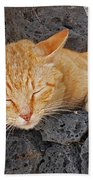 Lanzarote Ginger Bath Towel