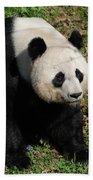 Large Black And White Giant Panda Bear Sitting Bath Towel