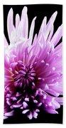 Large Purple Chrysanthemum-1 Bath Towel