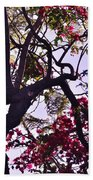 Late Afternoon Tree Silhouette With Bougainvilleas IIi Bath Towel
