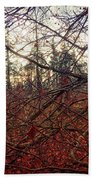 Late Autumn Morning Hand Towel