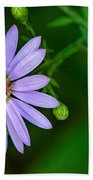 Late Purple Aster Bath Towel
