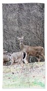 Late Winter Whitetails Bath Towel