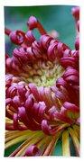 Lava Chrysanthemum Bath Towel